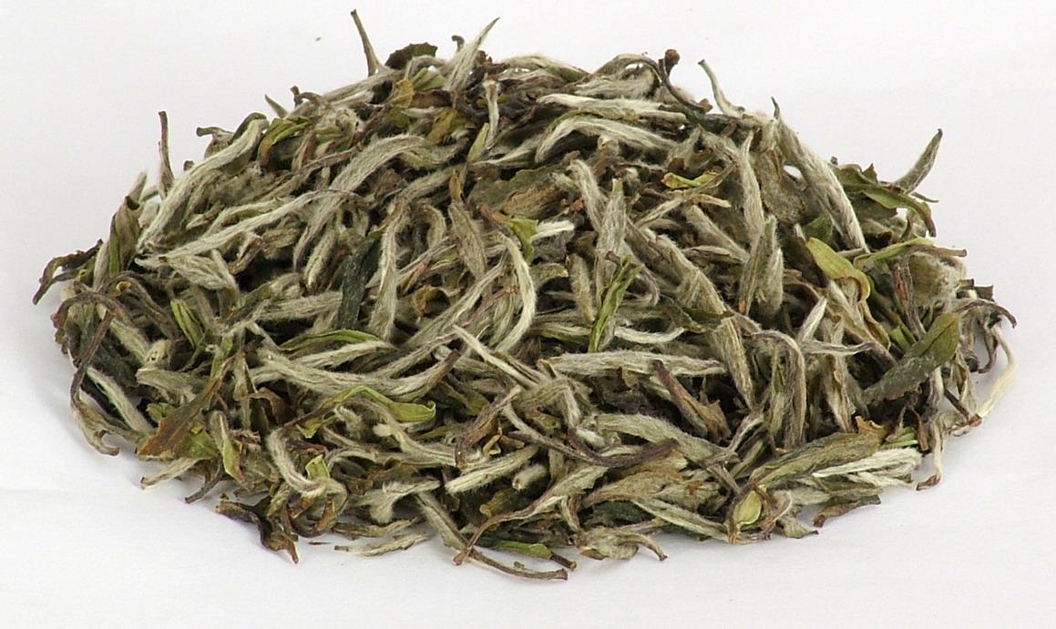 Белый чай чем полезен