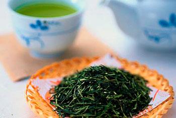 зелёный чай для похудения отзывы врачей