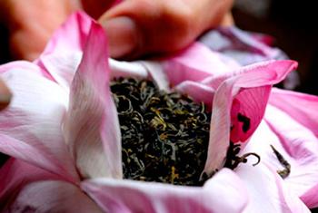 Чай в лепестках лотоса